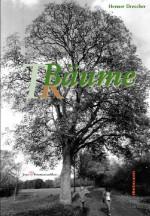 Bäume – Räume – Träume